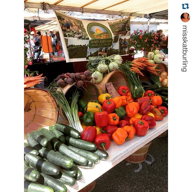 Geneva French Market - Instagram User @Misskatburling